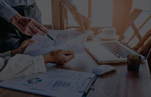 L1 Business Plan