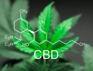 How-long-does-CBD-stay-in-your-system-2
